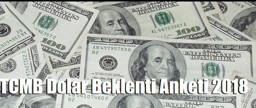 tcmb dolar